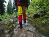 A Blurred View of a Hiker Trekking Through Yoho National Park