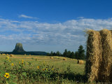 A View of Devils Tower from Across a Hay Field
