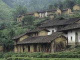 Terraced Village with Tiled Roofs and Mud Brick Houses  Rice Fields  Yang River Canyon