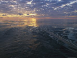 Sunrise is Reflected on the Wake of a Boat
