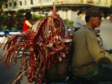 A Man Carries Meat Carcasses in a Basket on the Back of His Bike