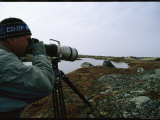 A Wildlife Photographer Captures Wapusk Wildlife on Film