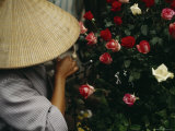 A Woman in a Conical Hat Prunes Roses to Sell off Her Bike