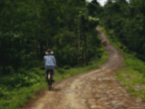 A Man on a Bicycle Pedals Down a Dirt Road Through a Rural Plantation