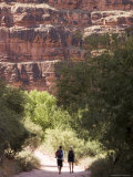 Two Hikers Along a Trail in the Grand Canyon