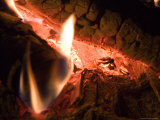 A Close View of Burning Logs in a Campfire