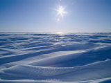 The Sun Shines Upon a Sea of Snow and Ice
