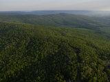 An Aerial View of the Cumberland Plateau Near Sewanee