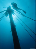 A Diver Swims Near the Mast of a Shipwreck Near Bermuda