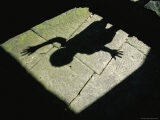 The Shadow of a Child with a Raised Hand Falls onto a Stone Floor