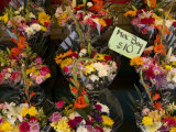 Bundles of Flowers for Sale by a Street Vendor in New York