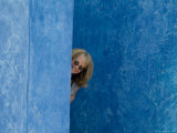 Woman Peeking Out from Between Bright Blue Walls