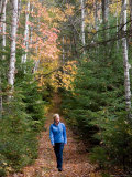 A Woman Enjoys a Beautiful Fall Day with a Hike in the Forest