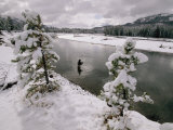 A Fisherman Tries His Luck in the Yellowstone River