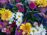 Bouquets of Colorful Flowers for Sale
