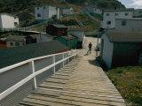 Wooden Walkway in Gaultois