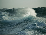 Close View of a Cresting Wave