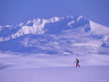 A Lone Traveler Hikes Through the Tundra Landscape