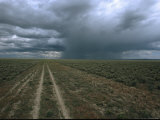 A Dirt Road Through Sagebrush Leads Towards a Distant Rain Storm