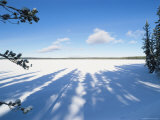 Frozen and Snow-Covered Shoshone Lake  Yellowstone National Park