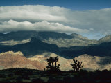 Scenic View of Red Rock Canyon National Conservation Area