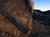 A Petroglyph of a Horned Animal on a Large Rock