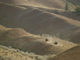Horseback Riders in the Hills of Grand Teton National Park