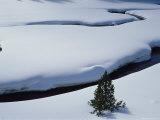 Snow-Covered Water  Virginia Creek  Wyoming