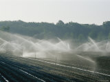 Field Irrigation  Provence Region  France