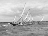 Sailboats Race Each Other off the Coast of England Near Cowes