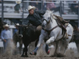 A Cowboy Drops off His Horse to Wrestle a Steer