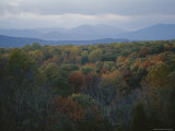 An Elevated View of Autumn Foliage and Distant Mountains