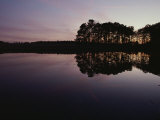 Scenic View of a Still Body of Water and Reflected Trees at Twilight