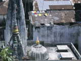 An Elevated View of Rooftops with Laundry  Spires  and Domes
