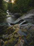 The Waters of Howe Brook Rush over a Rocky Streambed