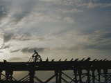 A Silhouetted Cyclist Crosses a Bridge at Twilight