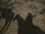 Shadows of People on Horseback in the Arizona Desert