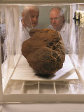 Two Researchers Observe a Mummy Bundle in a Humidification Chamber