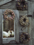 Dried Flower Wreaths Adorn a Wooden Wall Near a Window with Doves