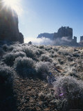 Ice Crystals and Ground Frost in Arches National Park  Utah