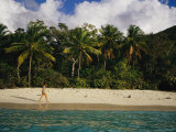 As Palm Trees Sway  a Woman Walks Along a Stretch of White Sand Beach