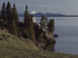 A Scenic View of Yellowstone Lake with a Canada Goose on the Shore