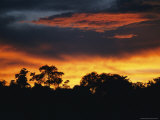 A Sunset Sets the Sky on Fire Near Borneos Menanggul River