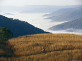 A Cyclist Rides in a Meadow Above a Fog Shrouded Valley