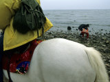 Horseback Riding Near Bohai Sea  Qinhuangdao  Hebei Province  China