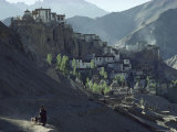 A Woman Leads Her Sheep Past Lamayuru Gompa