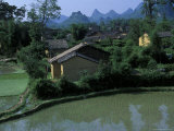 Yangdi Valley Farm Fields  Guilin  Guangxi  China