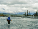 Man Carrying Backpack Crosses River in Denali National Park