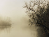 Fog Hovers Above the James River