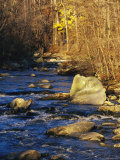 Rapids Bridge at Sunset with Boulders  Yellow Foliage and Trees